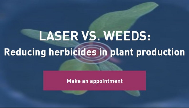 Laser versus weeds: Reducing herbicides in plant production